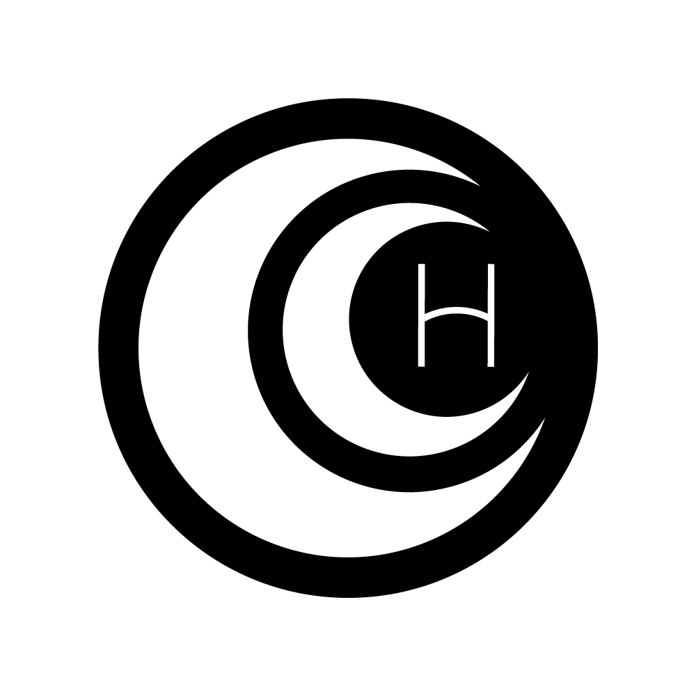 logo for Hailley Howard photographer at Hailley LLC